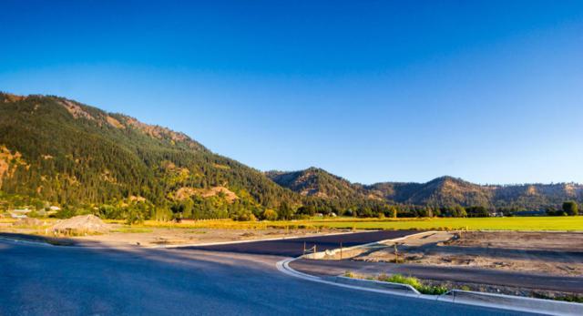 Lot 24 NN Pinegrass St, Leavenworth, WA 98826 (MLS #714146) :: Nick McLean Real Estate Group