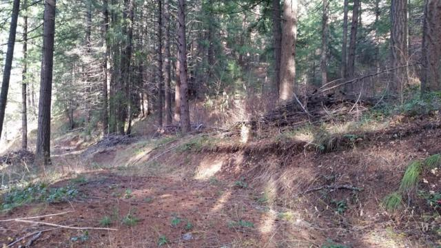 16965* Chumstick Hwy., Leavenworth, WA 98826 (MLS #714585) :: Nick McLean Real Estate Group