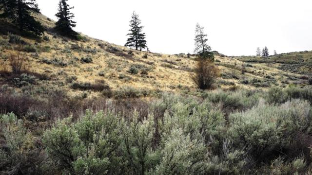 NNA Deer Creek Dr Lot 98, Waterville, WA 98858 (MLS #715400) :: Nick McLean Real Estate Group
