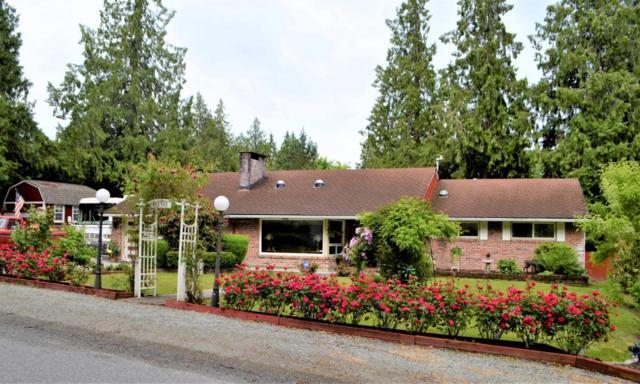 1001 N 14th St, Mount Vernon, WA 98273 (MLS #716046) :: Nick McLean Real Estate Group
