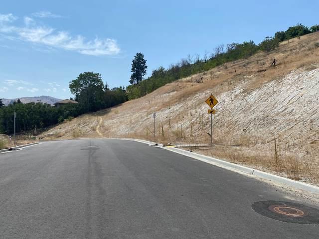 941 Spring Mountain Dr, Wenatchee, WA 98801 (MLS #717539) :: Nick McLean Real Estate Group