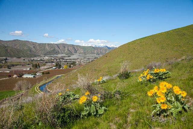 360 Diede Hills Ln, Wenatchee, WA 98801 (MLS #718834) :: Nick McLean Real Estate Group