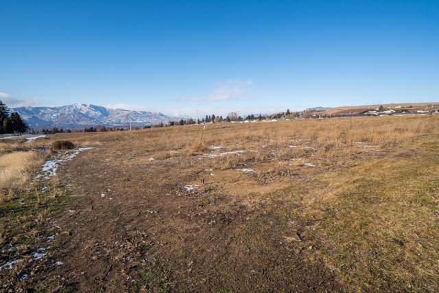 2296 5th St, East Wenatchee, WA 98802 (MLS #720510) :: Nick McLean Real Estate Group