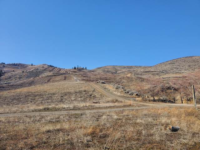 3870 Squilchuck Rd, Wenatchee, WA 98801 (MLS #720682) :: Nick McLean Real Estate Group