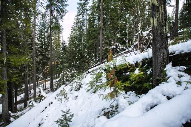64 Cedar Brae Rd, Leavenworth, WA 98826 (MLS #722628) :: Nick McLean Real Estate Group