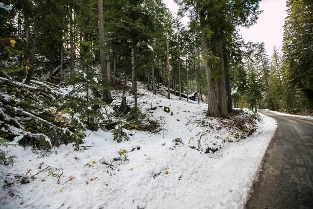 63 Cedar Brae Rd, Leavenworth, WA 98826 (MLS #722629) :: Nick McLean Real Estate Group