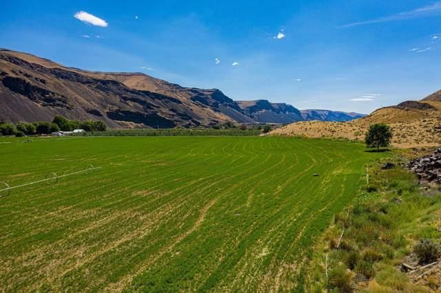 1301 Palisades Rd, Palisades, WA 98845 (MLS #723322) :: Nick McLean Real Estate Group