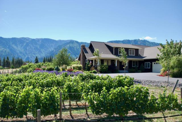 10190 Suncrest Dr, Leavenworth, WA 98826 (MLS #715891) :: Nick McLean Real Estate Group