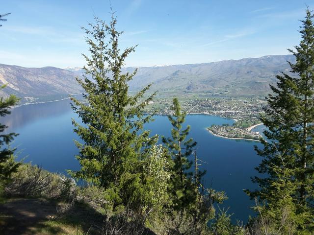 NNA Bear Mountain Rd, Chelan, WA 98816 (MLS #712914) :: Nick McLean Real Estate Group