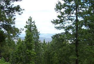 NNA Stiss Canyon Road, Wenatchee, WA 98801 (MLS #715221) :: Nick McLean Real Estate Group
