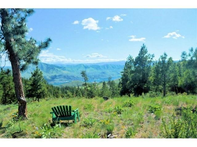 NNA Cottontail Ln, Chelan, WA 98816 (MLS #716883) :: Nick McLean Real Estate Group
