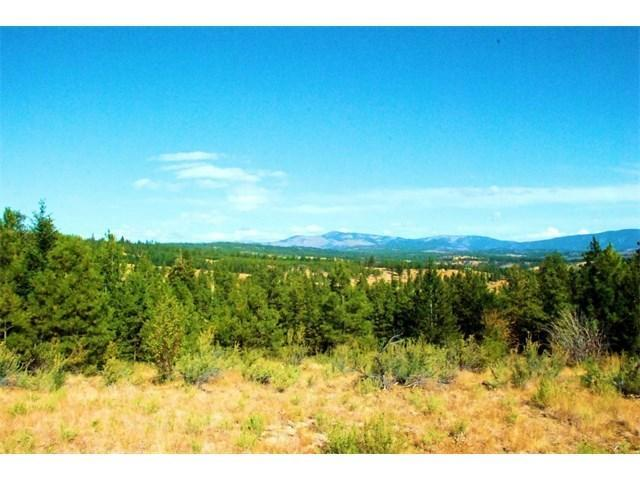 NNA Cottontail Ln, Chelan, WA 98816 (MLS #716889) :: Nick McLean Real Estate Group