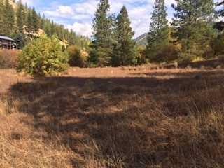 9995 Eagle Creek Rd, Leavenworth, WA 98826 (MLS #717302) :: Nick McLean Real Estate Group