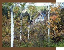 9496 N Fork Rd, Cashmere, WA 98815 (MLS #718254) :: Nick McLean Real Estate Group