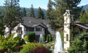545 Junction Lane #803, Leavenworth, WA 98826 (MLS #718615) :: Nick McLean Real Estate Group