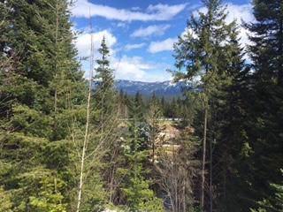 20656 Miracle Mile, Leavenworth, WA 98826 (MLS #719774) :: Nick McLean Real Estate Group