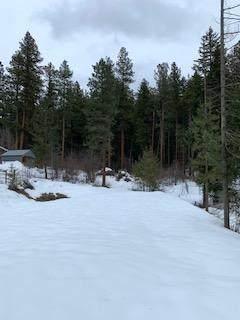 25804 Camp 12 Rd, Leavenworth, WA 98826 (MLS #720581) :: Nick McLean Real Estate Group