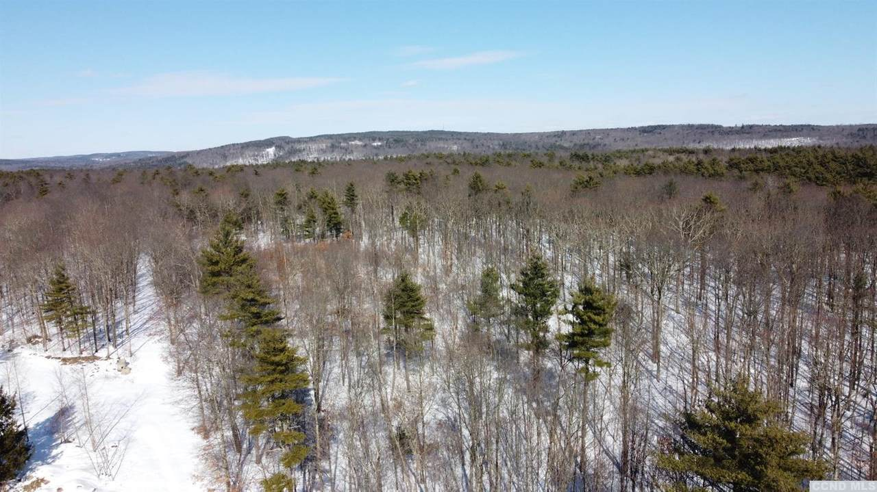 84 Birch Hill Drive - Photo 1