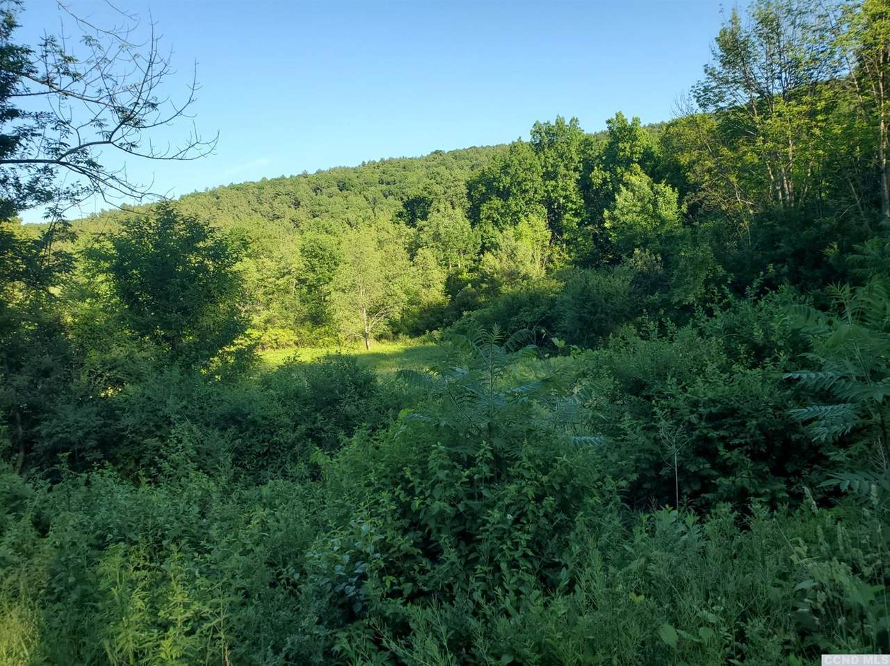 0 County Route 9 - Photo 1