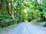 268 Angel Hill Road - Photo 1