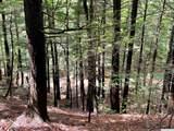 0 Woodland Trail - Photo 1