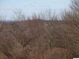 0 State Route 203, Crestview - Photo 24