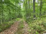 592 Bog Hollow - Photo 1