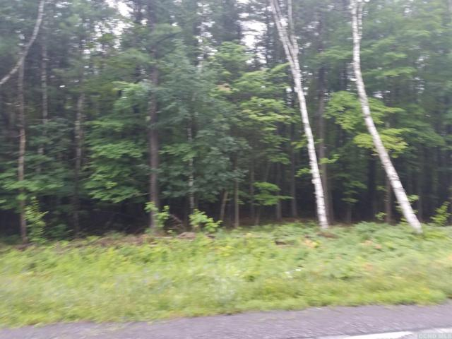 0 Coiunty Route 353, Rensselaerville, NY 12147 (MLS #116474) :: Gabel Real Estate