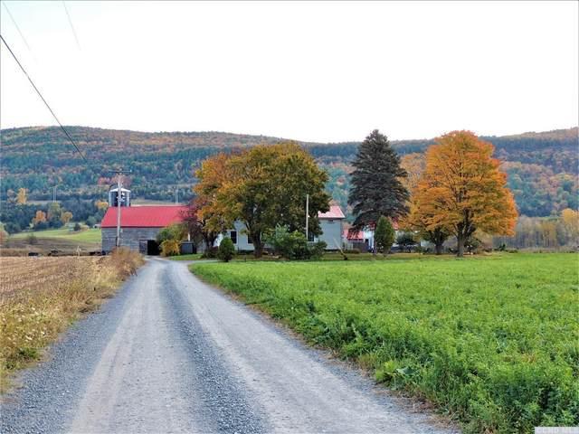 168 Middlefort, Middleburgh, NY 12122 (MLS #120313) :: Gabel Real Estate