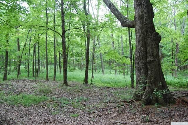 0 Mercer Mountain Road, Canaan, NY 12060 (MLS #121768) :: Gabel Real Estate