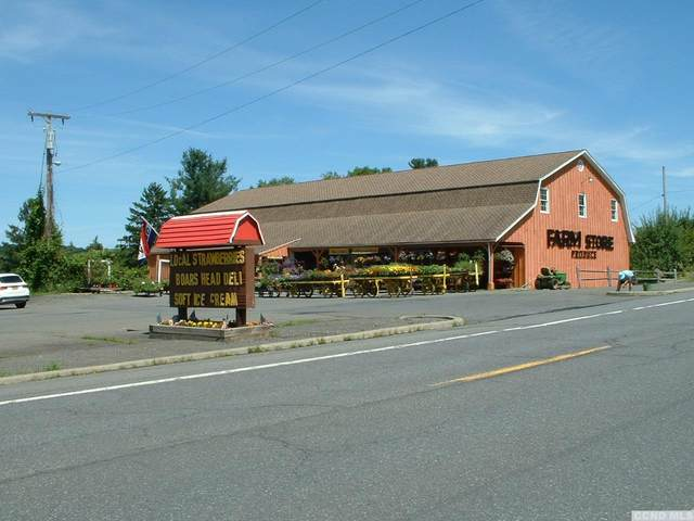 591 State Route 82, Taghkanic, NY 12523 (MLS #121797) :: Gabel Real Estate