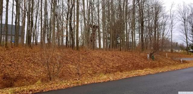 60 Chestnut Court, Claverack, NY 12565 (MLS #124634) :: Gabel Real Estate