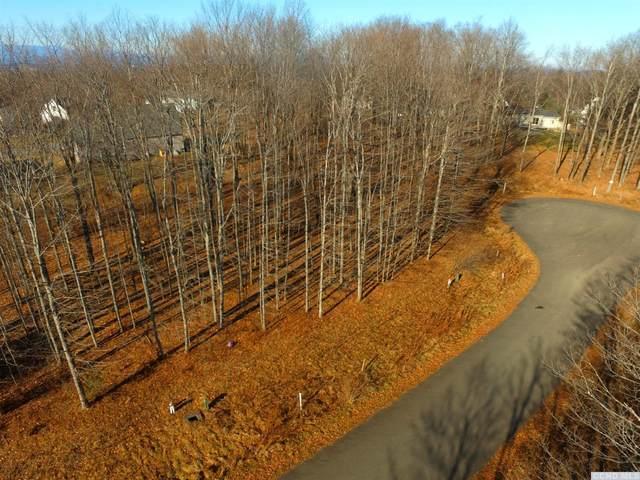 59 Chestnut Court, Claverack, NY 12565 (MLS #124640) :: Gabel Real Estate