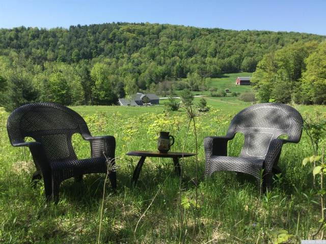 0 County Route 10, Prattsville, NY 12468 (MLS #125585) :: Gabel Real Estate