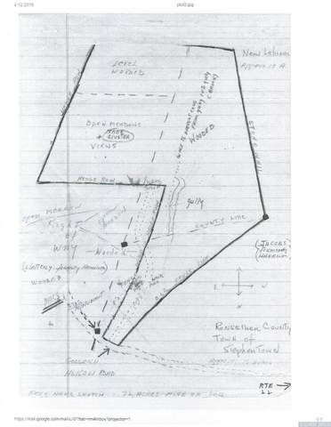 0 Goodrich Hollow Road, Stephentown, NY 12168 (MLS #126054) :: Gabel Real Estate