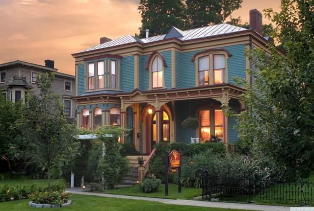5 Willard Place, Hudson, NY 12534 (MLS #127325) :: Gabel Real Estate