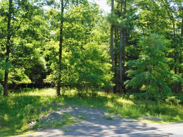 0 Cr 39 (Round Top Rd), Cairo, NY 12413 (MLS #127356) :: Gabel Real Estate