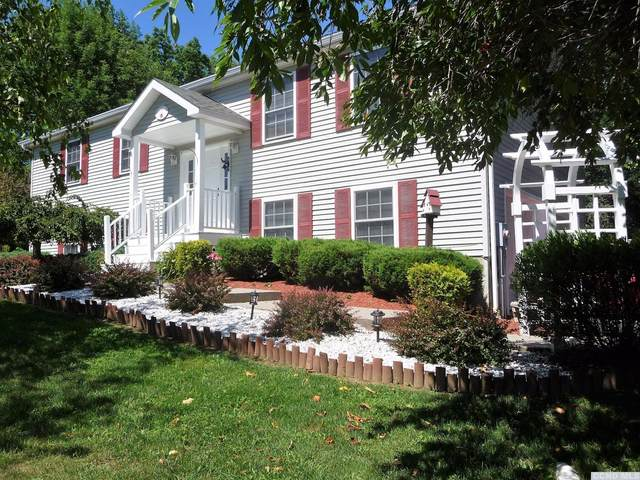 5 Country View Road, Millerton, NY 12546 (MLS #128993) :: Gabel Real Estate