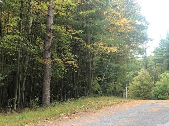0 Dederich Road, East Durham, NY 12168 (MLS #129110) :: Gabel Real Estate