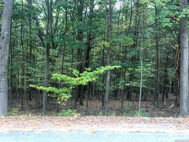 39 Dederich Road, East Durham, NY 12168 (MLS #129112) :: Gabel Real Estate