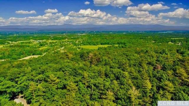 157 Mt Airy Rd, Saugerties, NY 12477 (MLS #129179) :: Gabel Real Estate