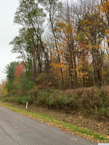 0 Upper Cady Road, Old Chatham, NY 12136 (MLS #129232) :: Gabel Real Estate