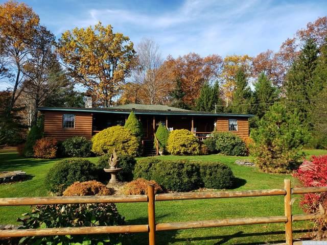 590 County Road 13, Lexington, NY 12452 (MLS #129369) :: Gabel Real Estate