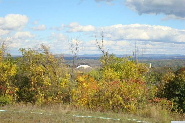 87 Winnie Ave, Ravena, NY 12143 (MLS #129420) :: Gabel Real Estate