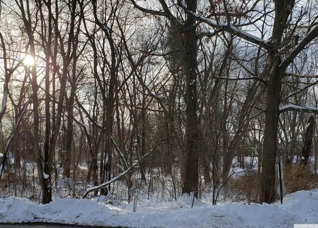 0 Lakeview Road, Copake, NY 12516 (MLS #129775) :: Gabel Real Estate