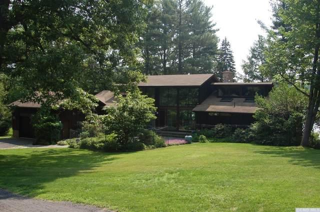 270 Island Drive, Copake, NY 12521 (MLS #129869) :: Gabel Real Estate