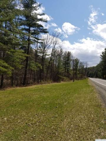 0 County Route 13, Chatham, NY 12024 (MLS #130208) :: Gabel Real Estate