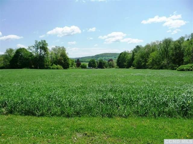 0 Beilke Road, Millerton, NY 12546 (MLS #130393) :: Gabel Real Estate