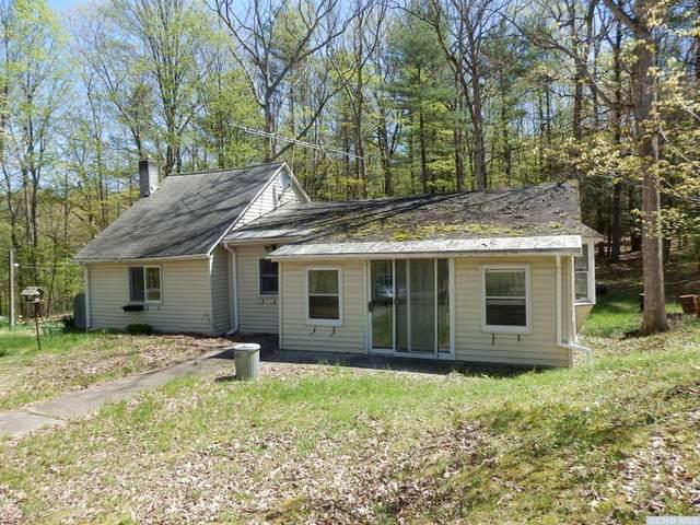 2254 Potic Mountain Road, Coxsackie, NY 12058 (MLS #130468) :: Gabel Real Estate