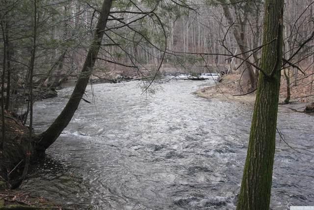 0 Prosperous Valley, Wallkill, NY 10940 (MLS #130546) :: Gabel Real Estate